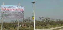 果园太阳能杀虫灯