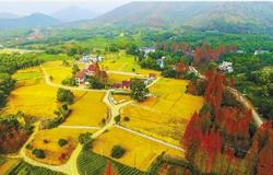 江苏省三大工程提升农业综合产能