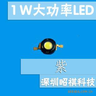 供应1W大功率LED 发光二极管 紫光