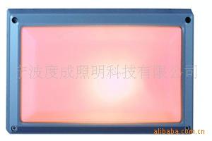 长方形铝压铸防潮壁灯