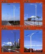 道路灯,景观灯,监控杆