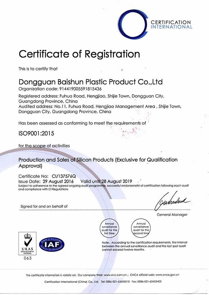 BaiShun ISO Certificate