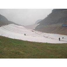 鞍山HDPE防水板