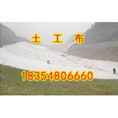 阜新HDPE防水板