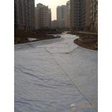 贺州HDPE防水板