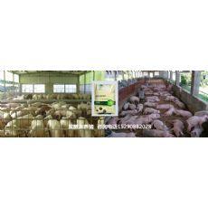 蓟县养猪发酵床只能用锯末稻壳吗