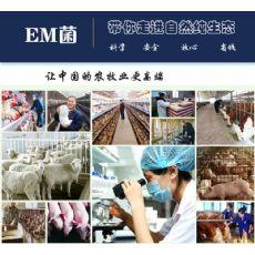 滁州市哪儿有卖液态肥发酵剂