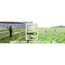 廊坊市种植有机蔬菜用什么肥料没有残留