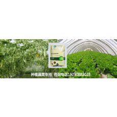 南阳市种植有机蔬菜用什么肥料没有残留