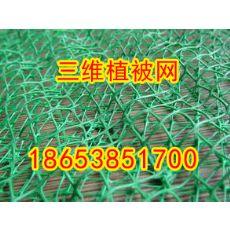 江苏三维植被网