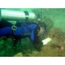 水下维修防腐公司