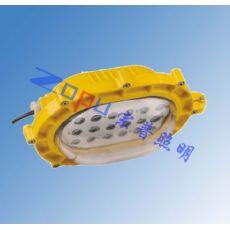 SW8102防爆LED应急灯,LED防爆灯SW8102