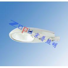 ZD001-N250防水防尘防腐路灯