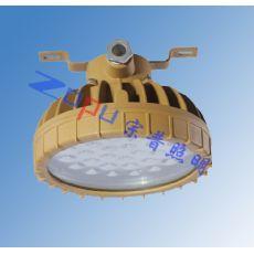 防爆LED泛光灯SW7151