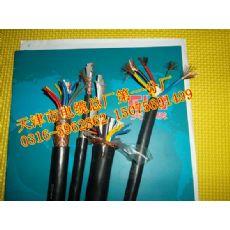 连江县计算机信号电缆-DJYVP/DJYPV/DJYPVP