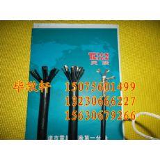 平潭县铠装计算机电缆DJYPV22