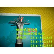 永泰县电子计算机用屏蔽电缆