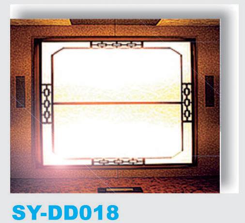 SY-DD018