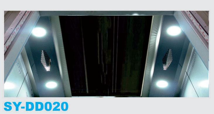 SY-DD020