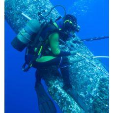 临安水下摄像公司《潜水录像》