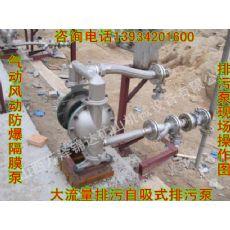 钻机清洗气动防爆隔膜泵滨州北海英格索兰ARO气动隔膜泵