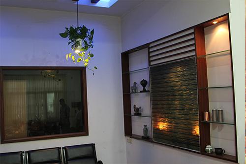 Plants oxygen lamp