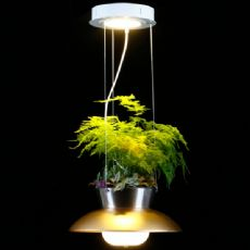 LED hanging baskets light