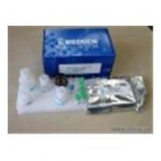 人妊娠特异性β1糖蛋白(SP1/PSβ1-G)ELISA试剂盒