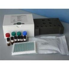 人胰多肽(PP)ELISA试剂盒