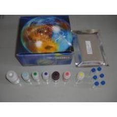 人促睡眠肽(DSIP)ELISA试剂盒
