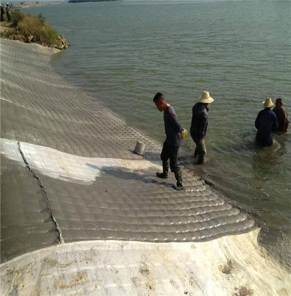 新聞:陜西省充沙袋公司價低質高