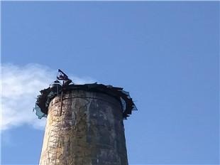 新聞:黔西州冷卻塔拆除公司-拼搏向上
