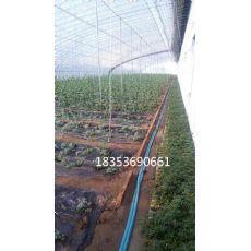 山东施肥灌溉系统施肥灌溉系统冬?#24352;?#38451;农业
