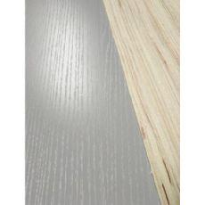 临沂市志国木业优良的山东生态板新品上市-防火门板厂家