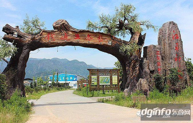 东营假树假山假树大门,假树大门尺寸,农场假树大门设计