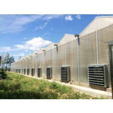 安徽玻璃板温室哪家好DIY客户的需求玻璃板温室建设@启帆
