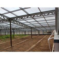 无土栽培温室报价-哪里有提供靠谱的无土栽培温室