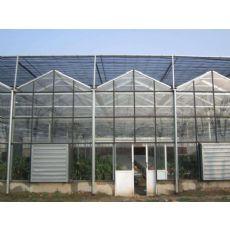山東玻璃溫室設計_質量好的玻璃溫室推薦