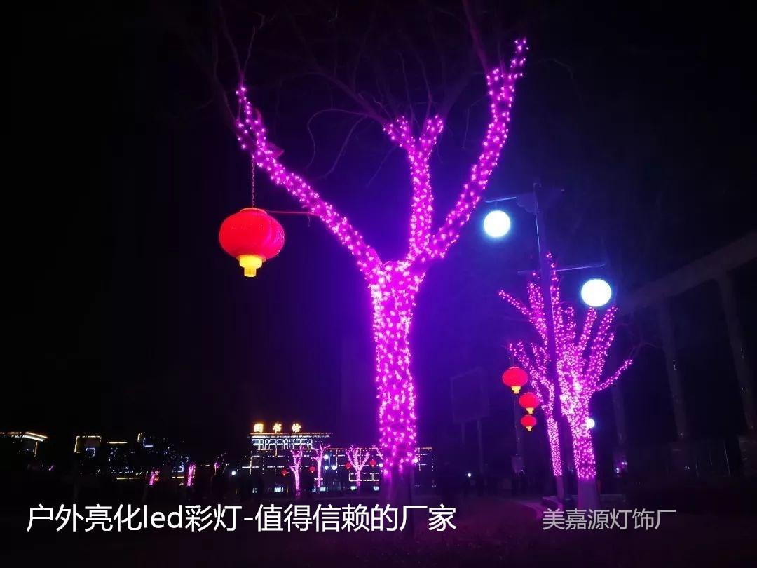 道路亮化掛樹燈-樹木亮化彩燈-街道樹木燈-掛樹燈批發價格-廠家提供