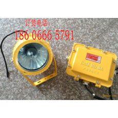 DGS70/127B(A),DGS70/127B(A)生产投光灯