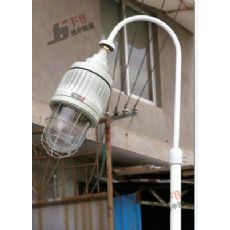 法兰式BCP防爆平台灯厂商  护栏式平台灯多少钱一个