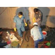 扬中防水堵漏公司单位