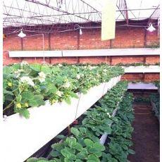 厂家推荐立体种植草莓槽,瓜果蔬菜种植槽,PVC立体种植槽