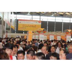 2015年上海国际高清显示展