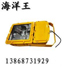 温岭海洋王BFC8110防爆泛光灯