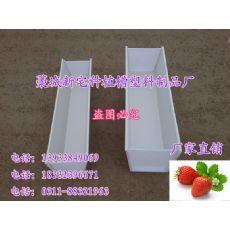 草莓立体式种植槽