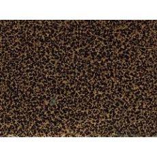 昆明哪里有供应报价合理的昆明粉末涂料,昆明粉末涂料供应厂家
