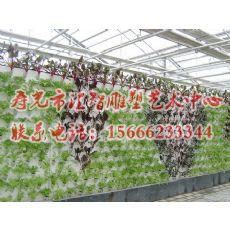 潍坊提供一流的农业无土栽培式建设|北京无土栽培模式建设