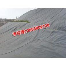 淄博养殖土工膜:高性价泥鳅养殖土工膜山东瑞亨建材供应