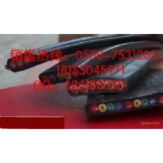 防腐耐高温行车扁电缆 YVFB 3*4+1*2.5 移动行车扁电缆 型号齐全厂家直销